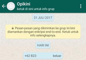 Perbedaan Hapus Akun WhatsApp Dengan Ganti Nomor
