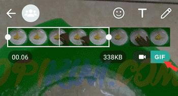 Mengubah Video Menjadi GIF di WhatsApp