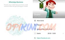 WhatsApp Business Cocok Buat Pemilik Toko Online?
