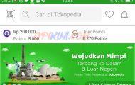 Cara Bayar Tokopedia Pakai OVO Cash dan OVO Points