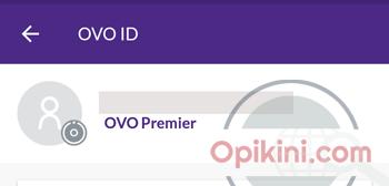 Upgrade OVO Berhasil